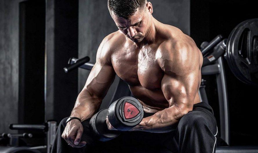 Как получить лучшие результаты от ципионата тестостерона?