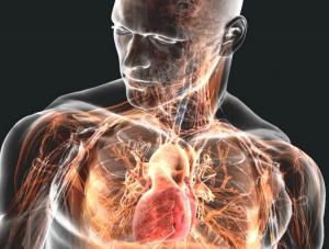 Повышение иммунитета с помощью анаболических стероидов: борьба с вирусами и инфекциями